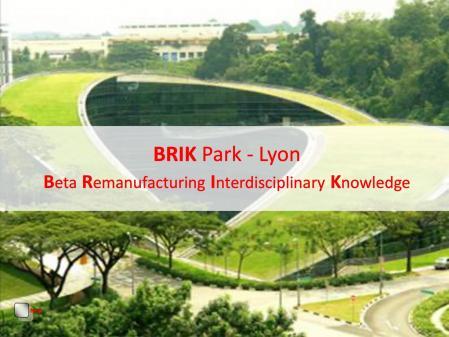 Brik park